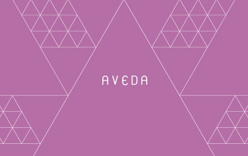 link to Aveda conference